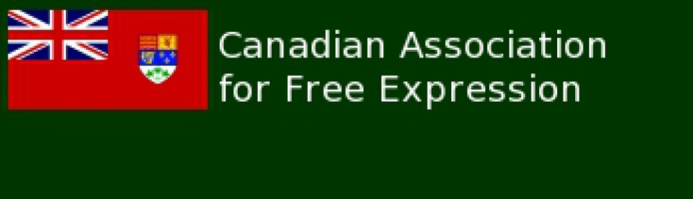 Capital One Visa Online Statement